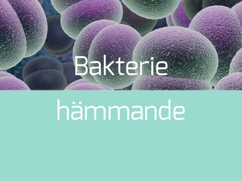 Bakteriehämmande Termoplast